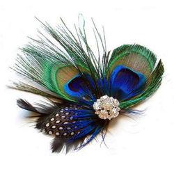 طاووس ريح [هير كليب] [هير بين] يتزوّج زخرفة نساء بنات شعب شريكات