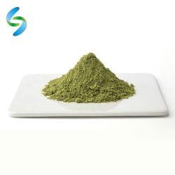 Commerce de gros organiques de la poudre de thé vert matcha japonais