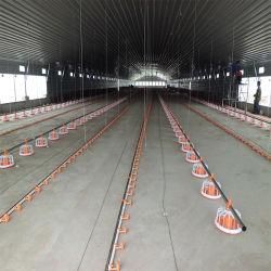 Edificio de acero prefabricada granja de pollos de Rock del techo de plástico con buen precio.