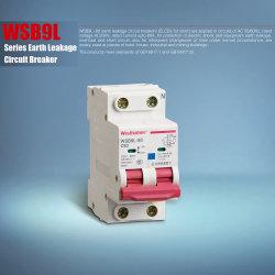 El aire de caja moldeada en miniatura, Capacidad de ruptura de CA 6ka 10ka fuga a tierra interruptor eléctrico Disyuntor Wsb9l-80 MCCB
