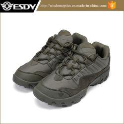 Sports de plein air tactique de chasse des chaussures de randonnée pédestre Camping Les voies de fait le commerce de gros