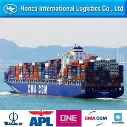 Transport maritime de Shenzhen Transitaire/Qingdao/Shanghai/Dalian à l'Algérie