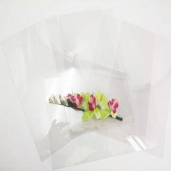 ThermoformingのためのAnti-Fog堅い0.25mm透過プラスチックペットフィルム
