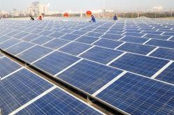 230W Módulo Solar Poly (IEC, TUV, CE)