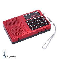 Nieuwe Draagbare Am/FM/Sw 3 Radio l-258 van Banden, met Vertoning TF/USB/Aux/LED