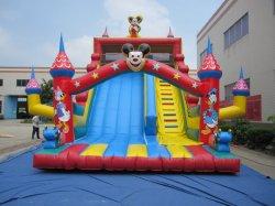 巨大で多彩な子供の膨脹可能なスライド