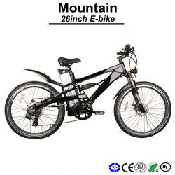 Absorvedor de choque Mountain Bike MTB Moto Atb Aluguer 250W do motor de elevador eléctrico de aluguer de bicicletas eléctricas (TDE05Z)