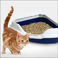 Produits pour animaux de compagnie en plastique de la litière pour chat boîtes