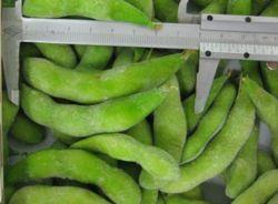 中国からのポッドが付いている高品質のEdamameの大豆