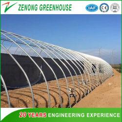 Prática e econômica de gases com efeito de estufa Solar montada para o plantio de Inverno