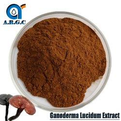 Reishiのきのこの粉のGanoderma有機性Lucidumのエキス