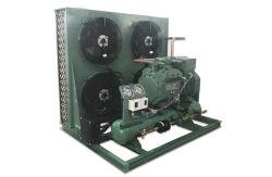 Bitzer deux étage compresseur Unité de condensation Air-Cooled unité de compresseur pour chambre froide