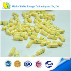 China GMP Certified Dieet Supplement Maca Plant Extract Capsule