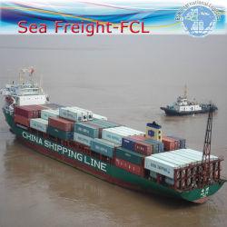 Exposición de logística, agente de expedición al mar desde el puerto de Yantian Kelang