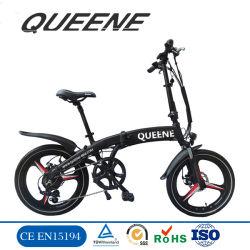 Queeneか電気バイクを折るブラシレス後部ハブモーター電気自転車250W