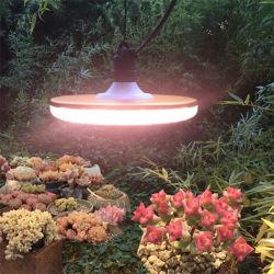 Meilleure vente de produits petit réflecteur 4FT T5 Sprout 115cm Daisy Chain ferme verticale de la culture hydroponique LED système grandir la lumière du tube