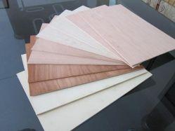 Pioppo/legno duro/Combi Core E1/E2 colla compensato commerciale per mobili