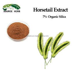 طبيعية عضوية 7% من استخرج هرقل السيليكا العضوي استخراج هرسييل هورسيتي