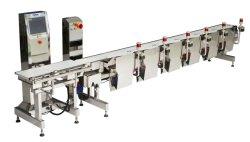 フルーツの重量の等級分け機械があるように重量のマルチソート機械を確認しなさい