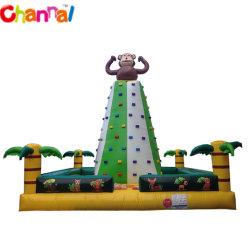 Parede de escalada em rocha insufláveis para Crianças, Piscina Interior Jogos Desportivos, as crianças de classe comercial escalada inflável para venda