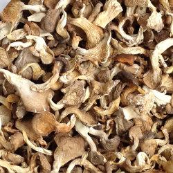 Сушеные грибы Shimeji Hypsizgus грибов