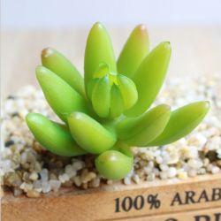 Piante succulenti artificiali della decorazione del PVC di falsificazione di plastica dell'interno del Faux