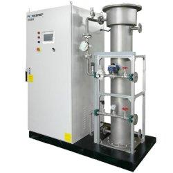 100-500g haute fréquence du générateur d'ozone pour l'eau, l'air, l'espace, de la nourriture et la désinfection de stérilisation