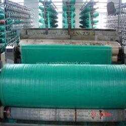 Vert tissu tissé en polypropylène de couleur à plat