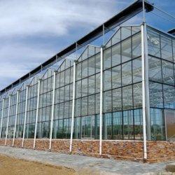 Сельскохозяйственная Стеклянная Газовая Теплица для Выращивания Овощей