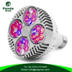 공장 주문 스펙트럼 점화 LED는 전구 120W를 증가한다