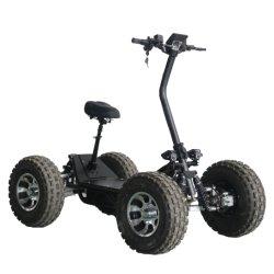 Marcação ce 2020 Novo Original 60V 4WD/4800W Electric ATV peste na Cor Preta 4 rodas off-road 4*4