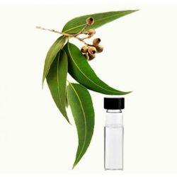 Óleo de eucalipto Factory Fornecer Alta Qualidade do Óleo de eucalipto CAS 8000-48-4 com bom preço