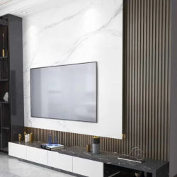 최신 판매 고급 실내와 옥외 사용 WPC 밖으로 문 CO 밀어남 벽면