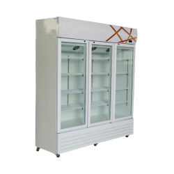 Tecumseh Kompressor-einzelner Temperatur-aufrechter Schrank-Handelsbildschirmanzeige Freezerless Kühlraum