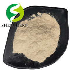 Estratto di soia all'ingrosso 100% di proteina di soia idrolizzata di peptide di soia in polvere Peptidi peptide di soia