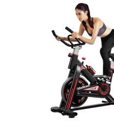 2021 Fitness comerciales caliente cuerpo en forma mayorista de aire de asalto reclinadas Bicicleta spinning Mini Spin
