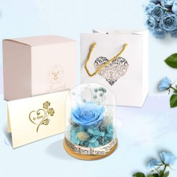영원한 레드 로즈 인 글래스 돔 핸드메이드 영원 꽃 갤럭시 로즈는 크리스마스 발렌타인 데이에 여성이나 친구 또는 가족을 위한 아이디어 선물을 제공합니다.