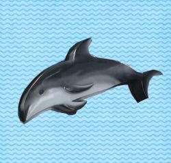 Les jouets en fibre de verre de l'eau Dolphin (ZC/FA/Dolphin-01)