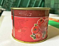 Comercio al por mayor los condimentos condimentos Tomate competitivo precio 210GX48latas
