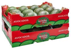 China Shpplier Custom Gemüse Obst Geschenk Faltbare Karton Karton Gewellt Box für Mango Banana Apfel Tomate Kartoffel Erdbeere Heidelbeere