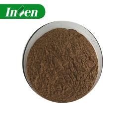 Fabricant extrait de racine d'ortie d'alimentation