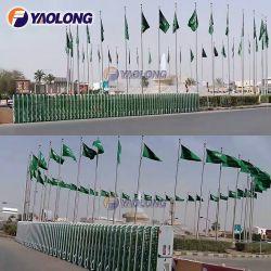 Vent de 30 pieds en acier inoxydable résistant d'un drapeau pôle pour le Qatar