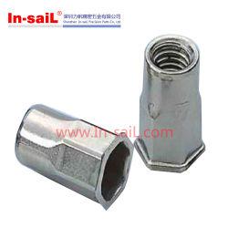 Слепой заклепки гайки - нержавеющая сталь M10 343 48 100 035