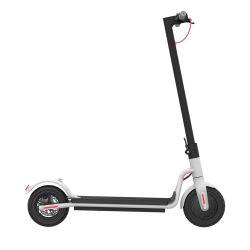 大人の競争350W 36V 26ahのリチウム電池の脂肪質のタイヤの電気スクーター