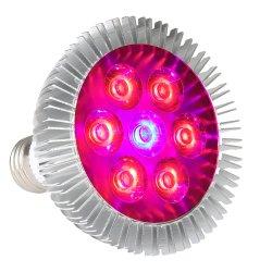 Le piccole piante conservate in vaso dell'interno LED più fresco coltivano l'indicatore luminoso