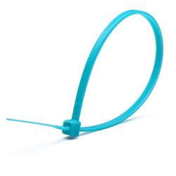 De Nylon de plástico com Autobloqueio flexível 66 Braçadeiras Zip (TC005-0310)