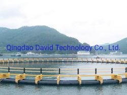 HDPE van de aquicultuur Vierkante CirkelKooi Netto voor Kweken van vis
