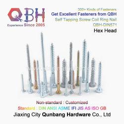 Qbh DIN571 rostfreies Kohlenstoffstahl-Hex sechseckiges u. rundes Signalhorn gekerbte grobe Gewinde-Haupttrockenmauer-hölzerne selbstschneidende bohrende Dach-Ring-Ring-Seil-Endstück-Schrauben