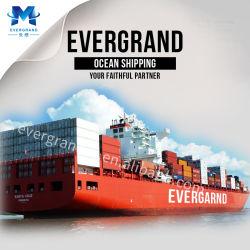Service de livraison de la mer de Qingdao à Lagos/Apapa/Tincan/onne/Akassa/Oron/Warri/Opobo/Sapele/Okrika/Port Harcourt/Koko/Forcados/Nigeria