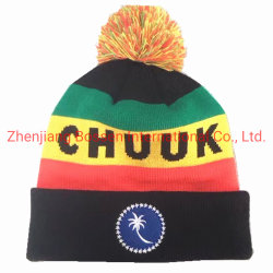 China Factory OEM Customized Logo Embroidery Jacquard Knitted Beanie Winter キャップ( Cap )